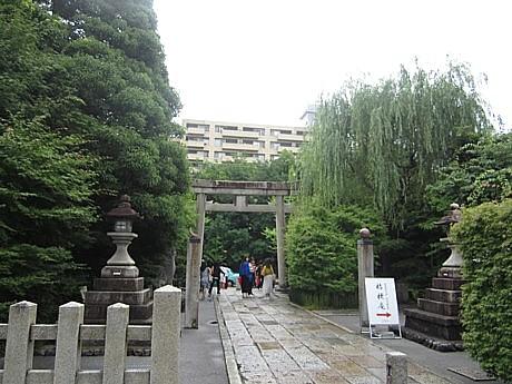晴明 (9).JPG