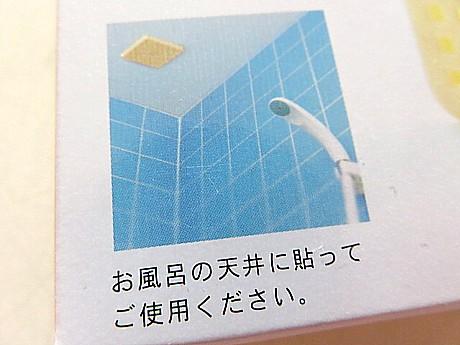 yukio0827 002.JPG