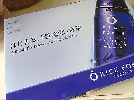 yukio1114 006.JPG