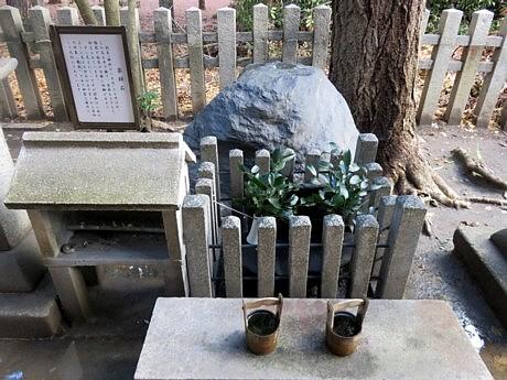 御所白雲 (53).JPG