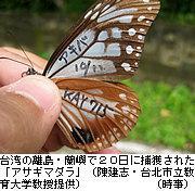 20101123at15t.jpg