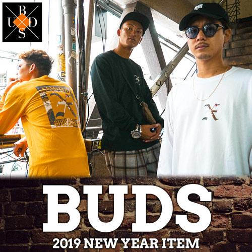 20190101-BUDS.jpg