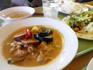 jica_curry