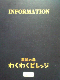 Image519.jpg