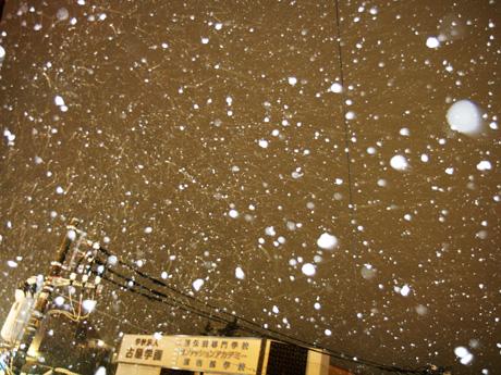 雪 2010 吉祥寺