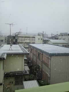 1/14雪景色