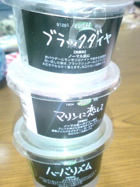 SN3D04980001.jpg