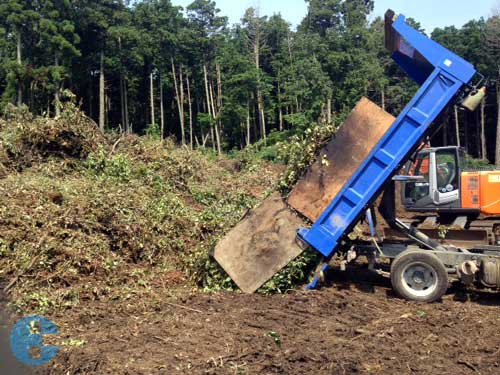 3tトラック伐木処分