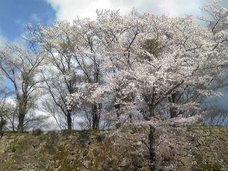 鶴山公園02