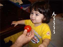 2008.7.7 トマト初挑戦&収穫2