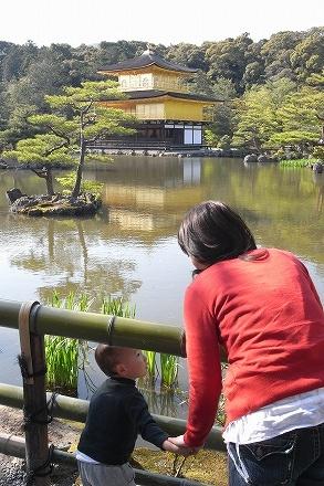 金閣寺を見る