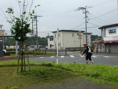 駅前草取り4