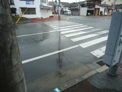 11月の雨2