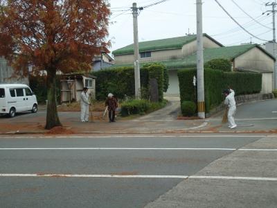 街路樹の落ち葉8