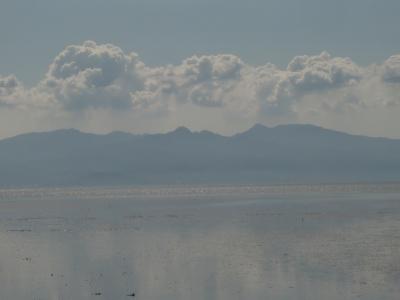 有明海の干潟4