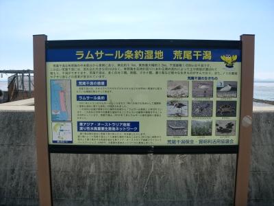 有明海の干潟5