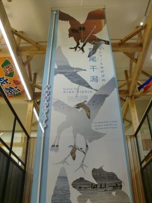 荒尾干潟・水鳥・湿地センター26