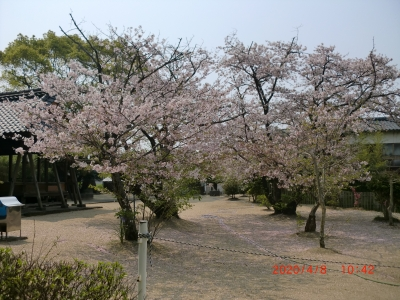 熊野神社7