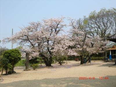 熊野神社8