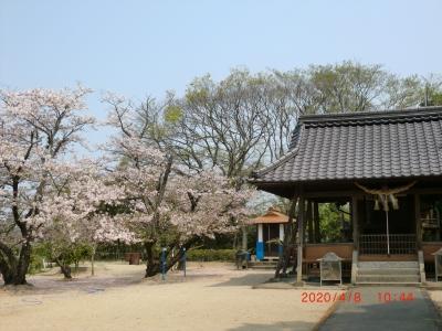 熊野神社11