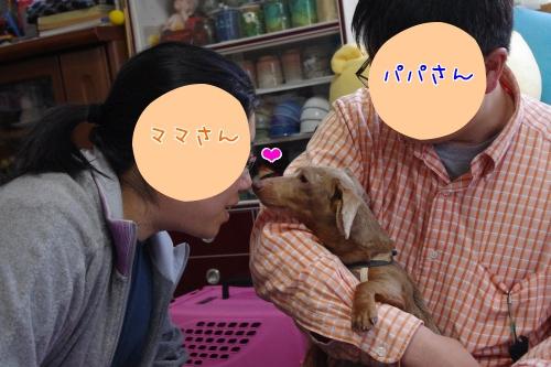 WiMA1.jpg