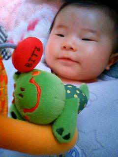おもちゃ好きなんです〜