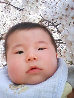 桜バックでパシャ!