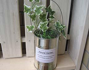 空き缶のガーデンポット01