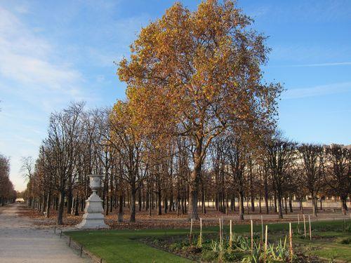 Tuileries-3
