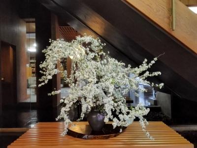 雪柳・店舗の花・徳島・呉服店