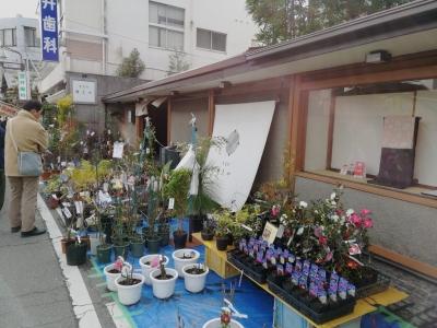 徳島 えびす祭り 事代主神社 2020年 中通町きもの婦久や