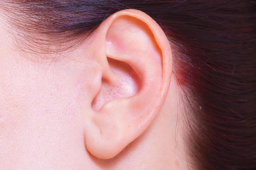 人の耳の形に性格が出る!?