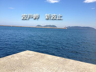 波戸岬 新波止