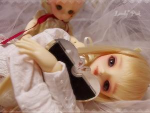 紅&雛03