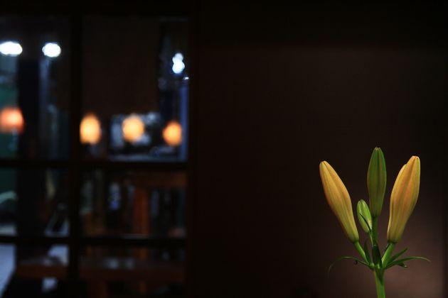 マリ・無垢根亭、百合の花と、酒蔵の結界