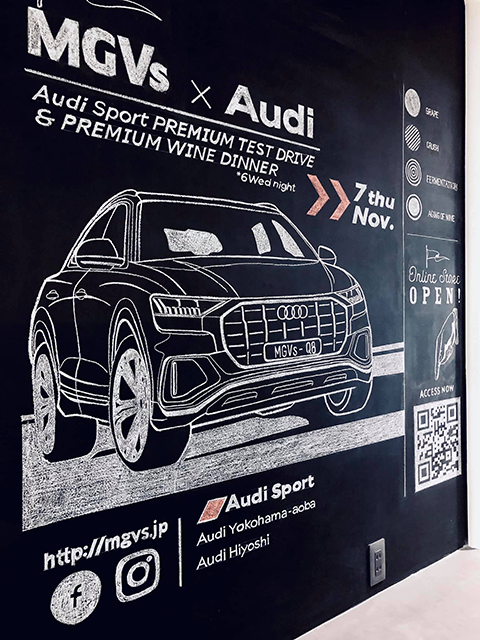 MGVs X Audi