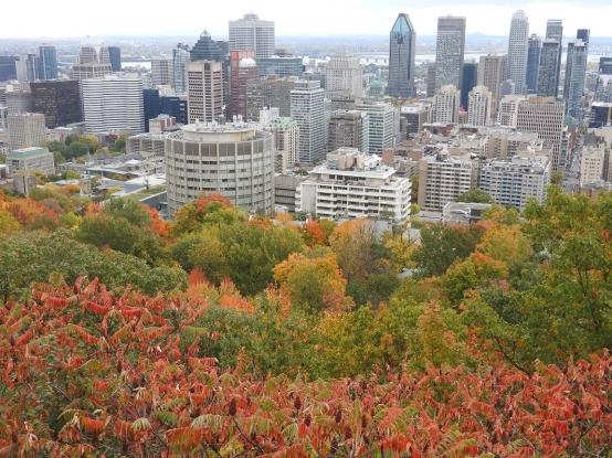 Montreal, モントリオール 紅葉 秋 モンロヤル Mont Royal