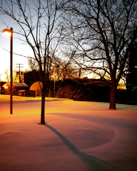 モントリオール 冬 montreal