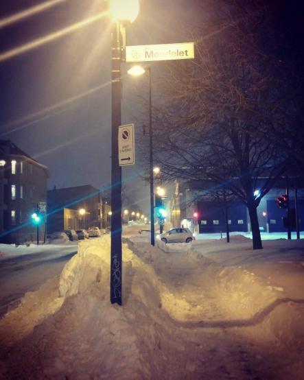 モントリオール 雪