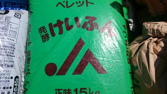 DSC_0613.JPG