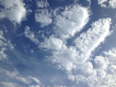 写真 12-08-16 16 09 52.jpg