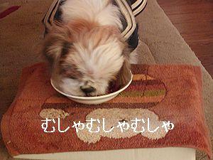 ご飯を食べて