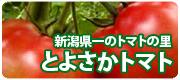 とよさかトマト