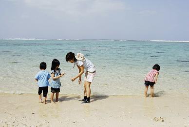 海辺のお宝発見隊