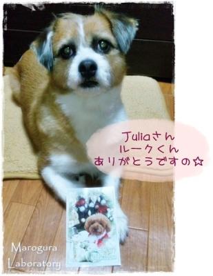 Juliaさんからのクリスマスカード2