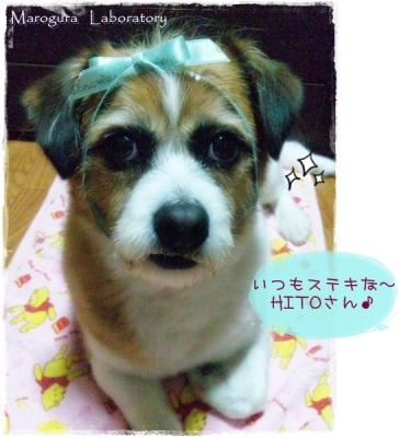HITOさんのお誕生日1