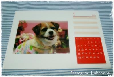 【モニプラ】TOLOTカレンダー5