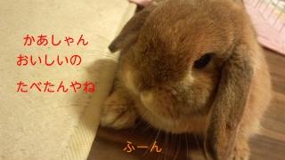 140112_221225_ed.jpg