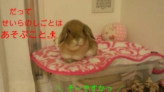 140222_232403_ed.jpg