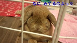140616_222702_ed.jpg